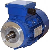 Электродвигатель для мясорубки МИМ-300М